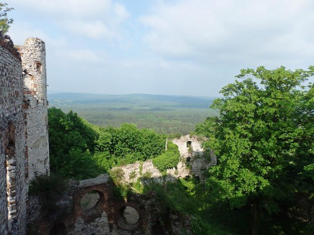 Widok z wieży (maj 2016)