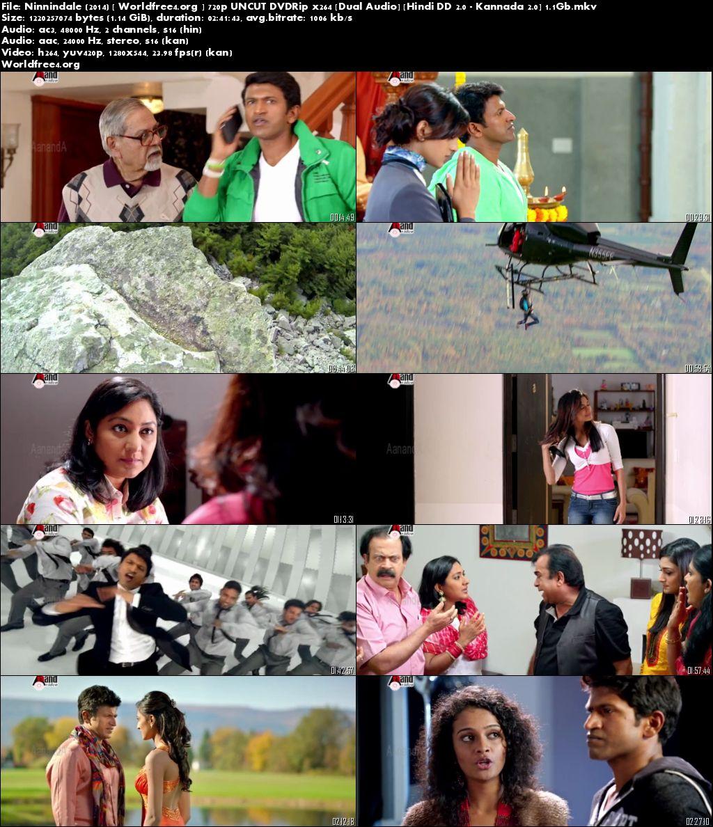 Ninnindale 2014 DVDRip 500Mb 480p Hindi UNCUT Dual Audio Download