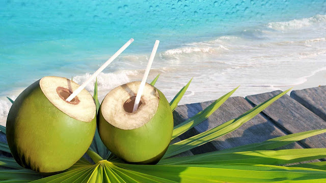 wallpaper minuman buah kelapa