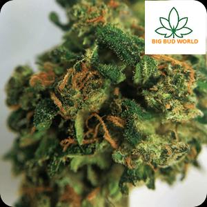 Buy Marijuana Online | Buy Weed Online | Buy Thc Vape Oil