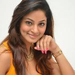 Shilpi Sharma hot photos in tight wear