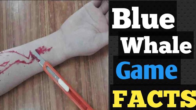 Blue whale Game Facts In Hindi