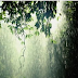 Happy Monsoon Season  ऋतुओं की रानी - वर्षा ऋतु