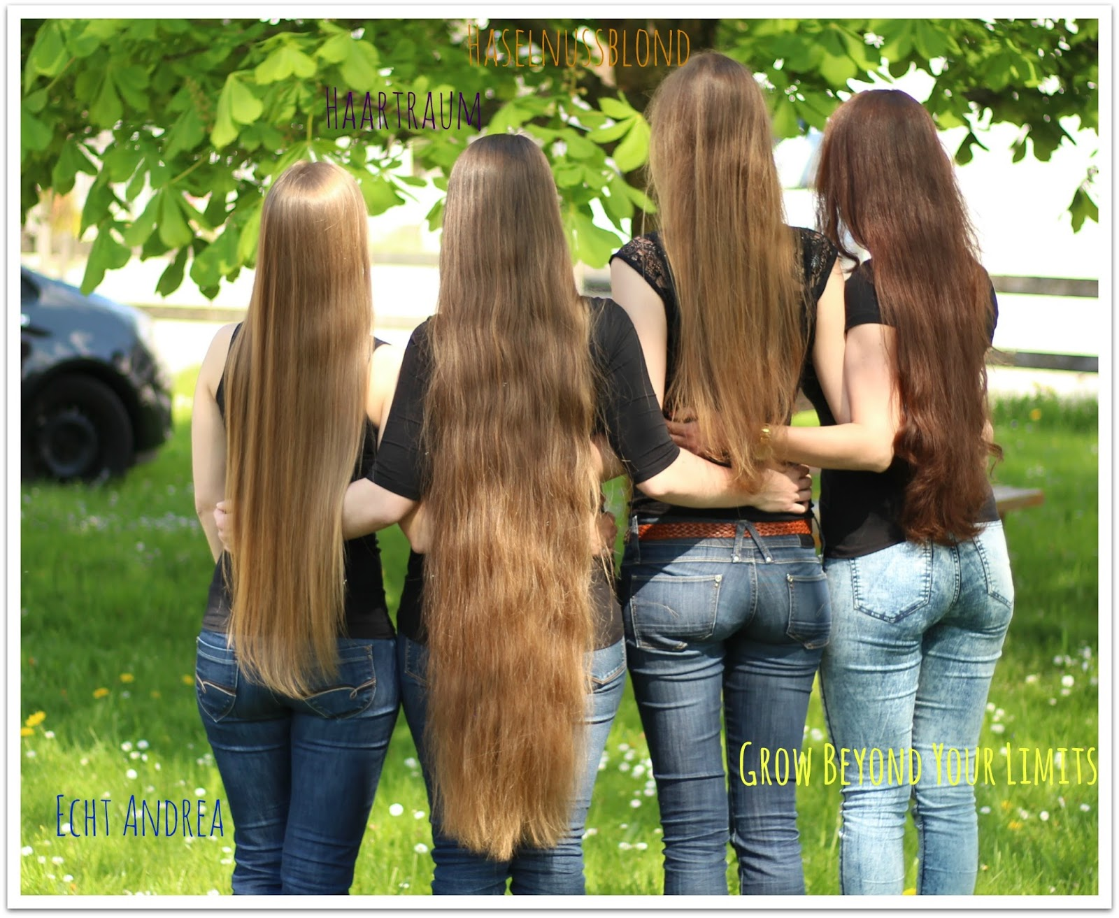 How to grow healthy  long and beautiful hair  Holistic and Natural     im Allg    u