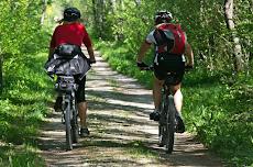 Tips Membeli Sepeda Gunung Termurah 2019