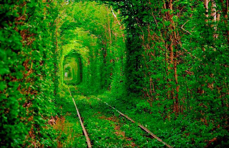Sitio Espectacular Romántico, El Túnel del Amor, Klevan, Ucrania 2