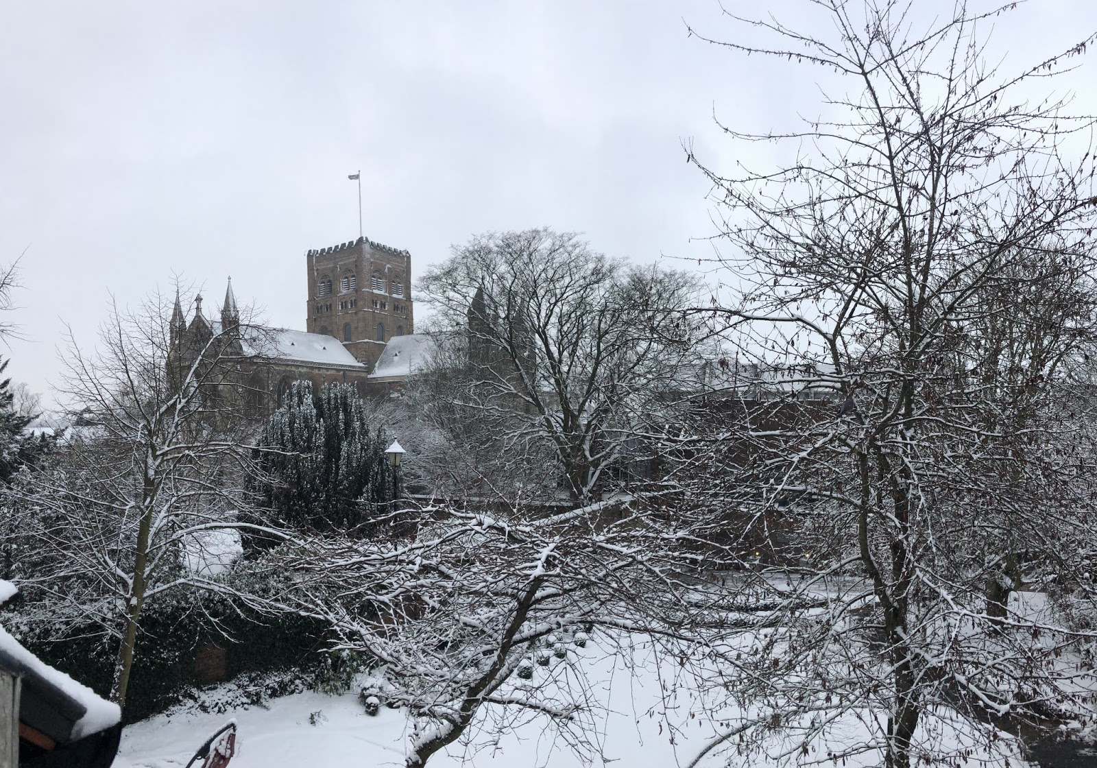 A Photo A Day, 28 January - 3 February 2019