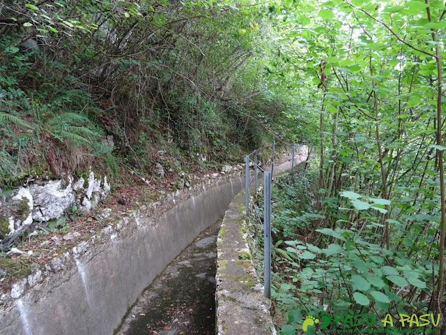 Canal de Reñinuevo: Sobre el muro y el bosque