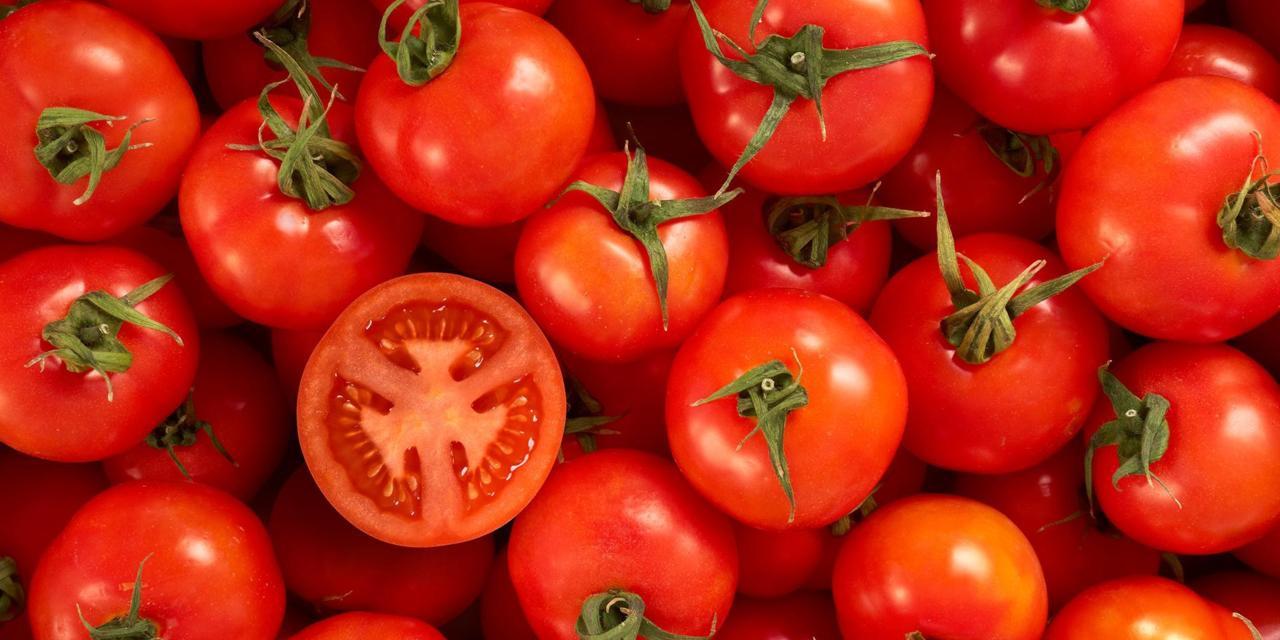 Kumpulan Cara Membuat Masker Tomat