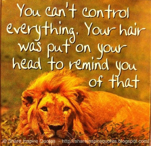 Inspirational Life Quotes And Sayings You Can T Control: You Can't Control Everything...You Hair Was Put On Your
