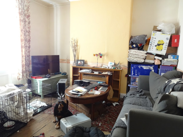 victorian terrace living room in need of renovation