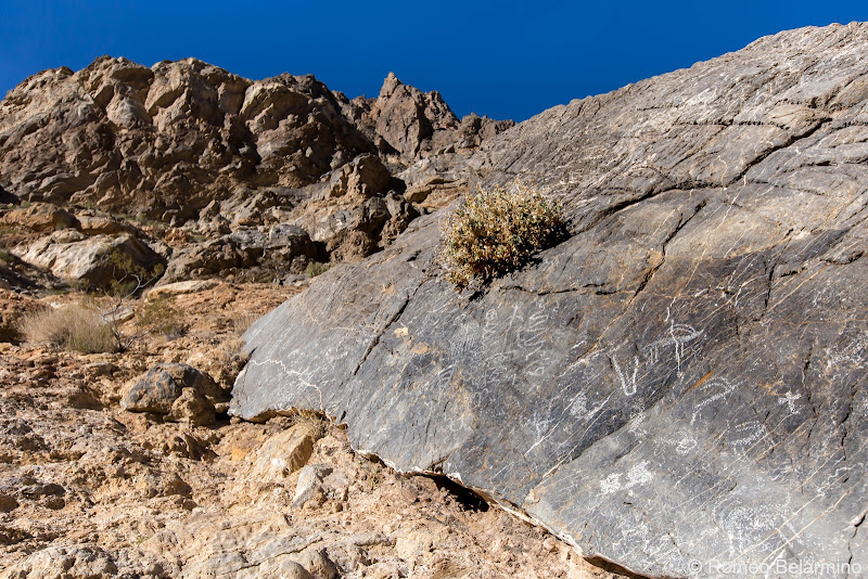 Klare Springs Petroglyphs Titus Canyon Death Valley Road Trip Itinerary