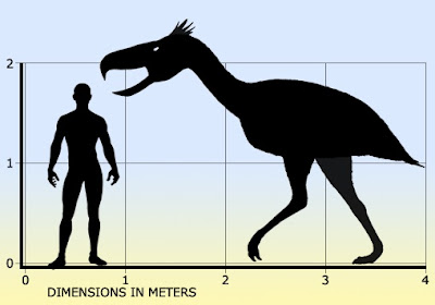 Terror Bird Size compared to Human