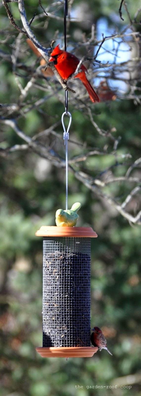 Rebecca S Bird Gardens Blog Diy Sunflower Tower Bird Feeder