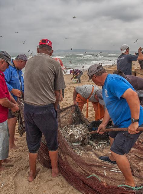 costa de lavos peche traditionnelle
