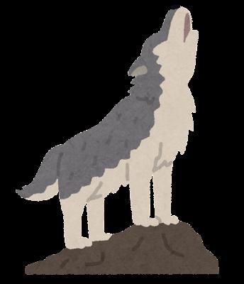 オオカミの遠吠えのイラスト