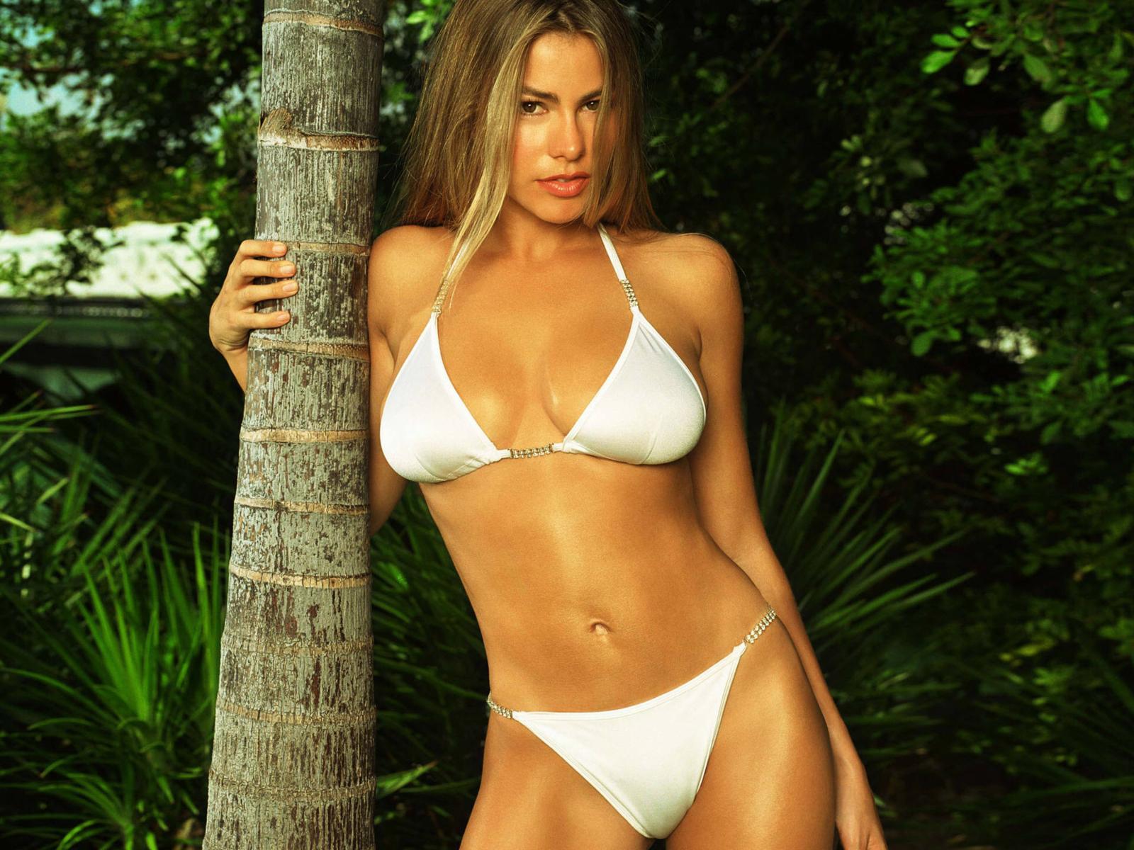 Bree olson bikini