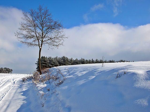 droga, śnieg, mróz, zdjęcia przyrody
