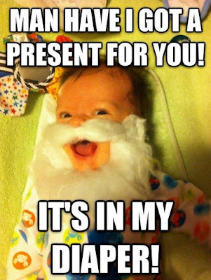 funny Christmas cat memes