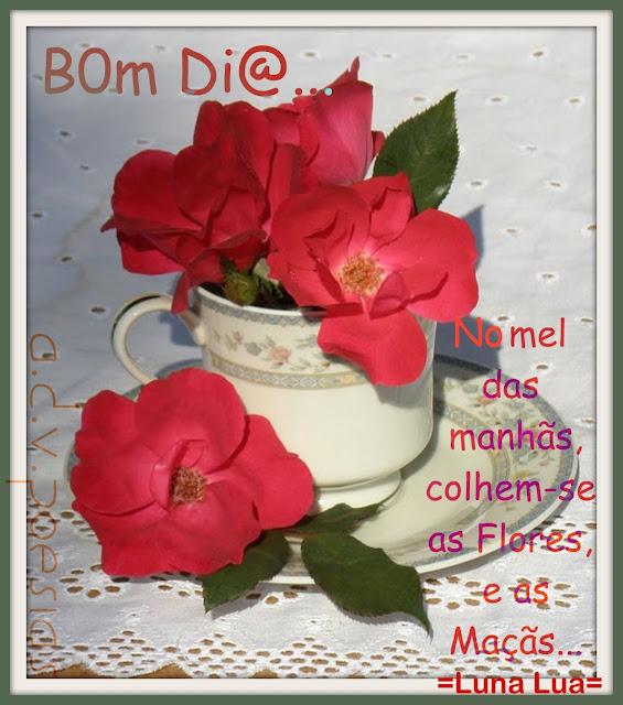 Mensagens Lindas De Bom Dia Com Flores Reflexão Da