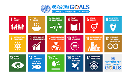 Align your Business with the SDGs