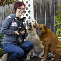 A woman sits with three well-behaved dogs.