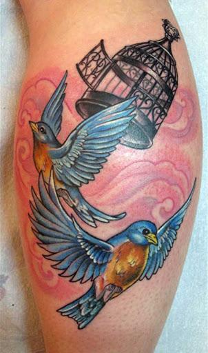 Este belo pássaro preto gaiola