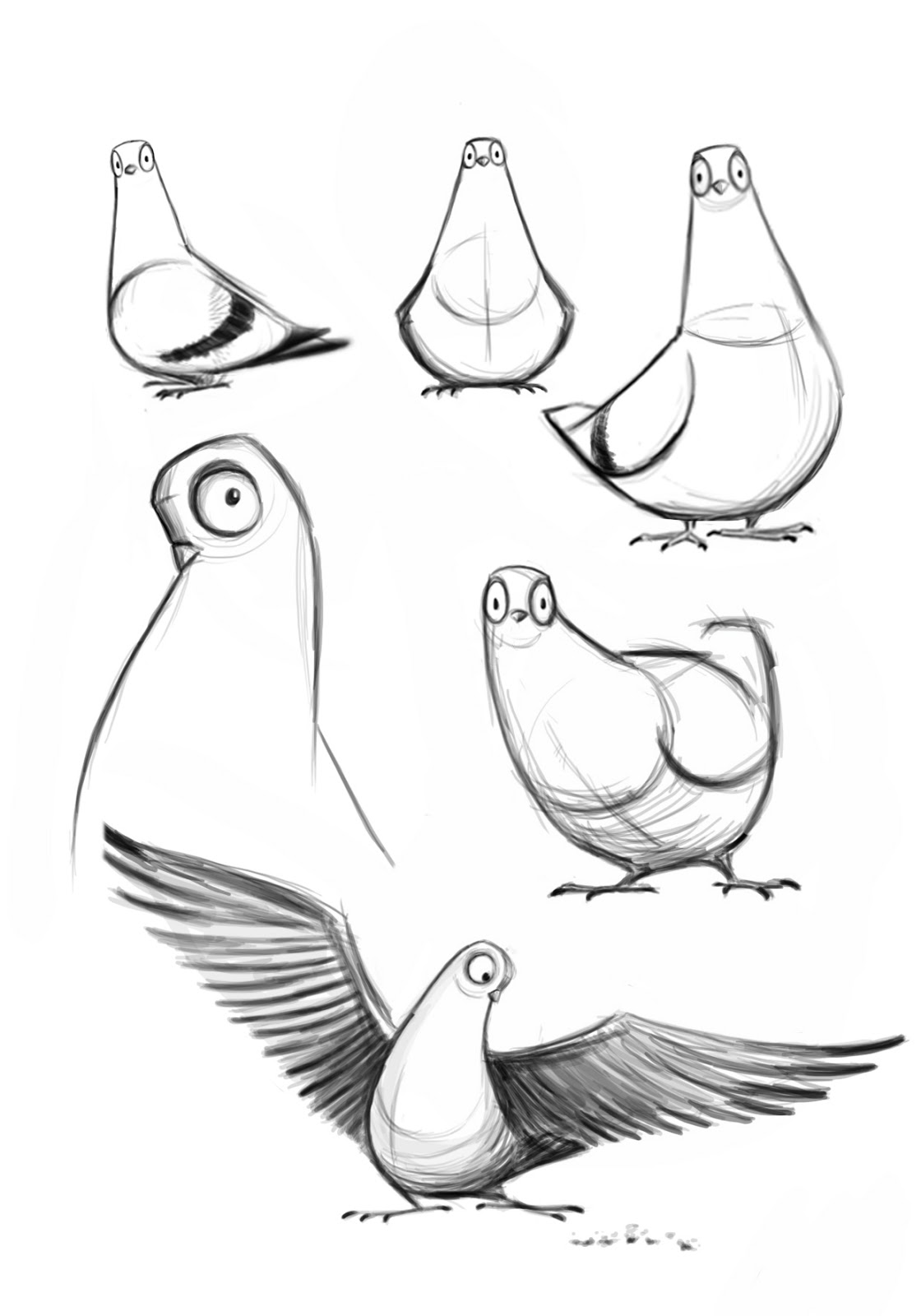 Dove Bird Drawing Easy Wesele Golabek Ikona Szkicu Grafika