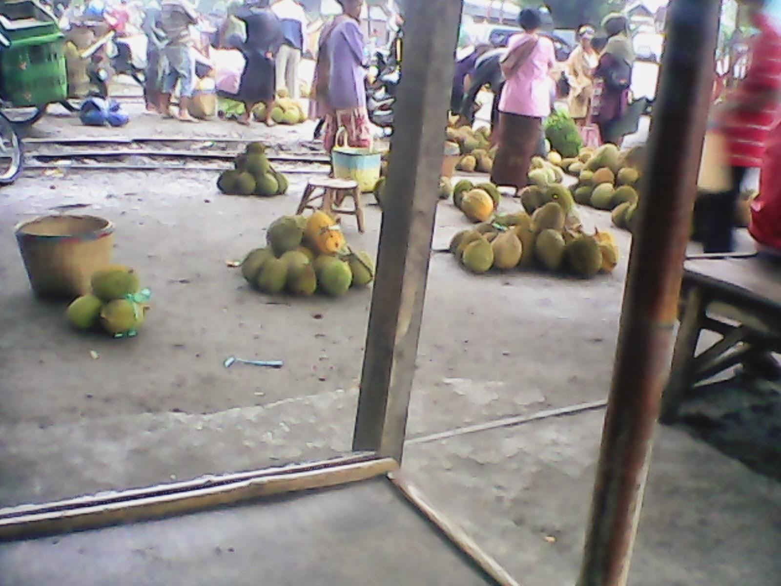Peribahasa Indonesia Bagai Mendapat Durian Runtuh