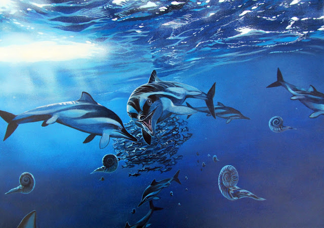 Marine animals have been following their preferred climate for millions of years