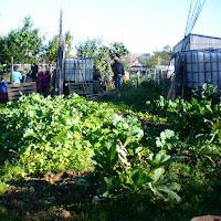 Giardini Marie Curie e viale della Frutta