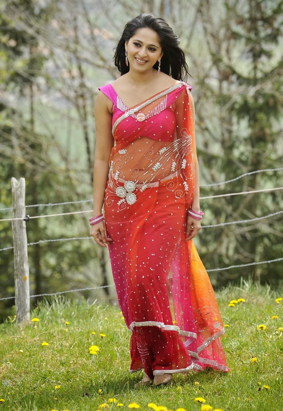 Transparent Saree: Anushka Shetty Looks Sexy In Transparent Saree