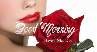 good morning love cute red rose image for boyfriend