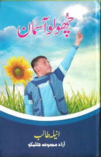 Choo Lo Aasman Novel By Anila Talib