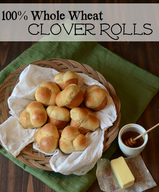100% Whole Wheat  Rolls, whole wheat roll recipe