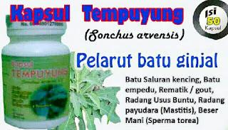 https://alamiherbalsurabaya.blogspot.com/2013/12/kapsul-ekstrak-tempuyung-herbal-peluruh.html