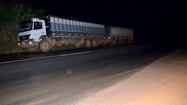Caminhão carregado com boi provoca acidente na BR 364