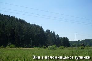 Вид з паломницької зупинки в с.Страдч