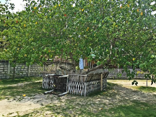 Shalala Beach Resort Cottage Under The Tree
