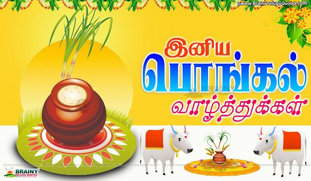 tamil sankranti greetings, best sankranti quotes hd wallpapers in Tamil