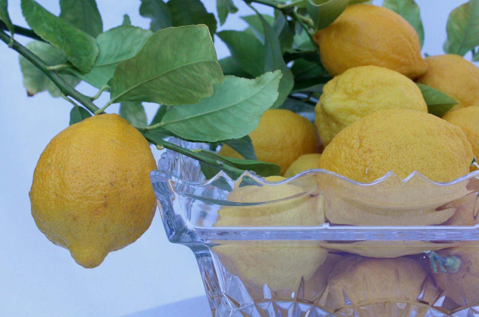Health Benefits of Lemon {Health & Fitness} - Wendys Hat