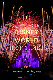 tips for walt disney world visit first trip