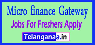 freshers week, freshers fair , jobs for freshers , fresher jobs , it jobs for freshers, freshersjob , freshers world, fresherjob , fresher job world, fresh job updates, freshers recruitment,job sites ,job search engines,jobs hiring career , job openings , job opportunities, job websites , security jobs , employment , job search sites , job vacancies, looking for a job , job seekers , recruitment agencies, job listings, employment agencies , job application, job hunting , retail jobs , job boards, job finder,