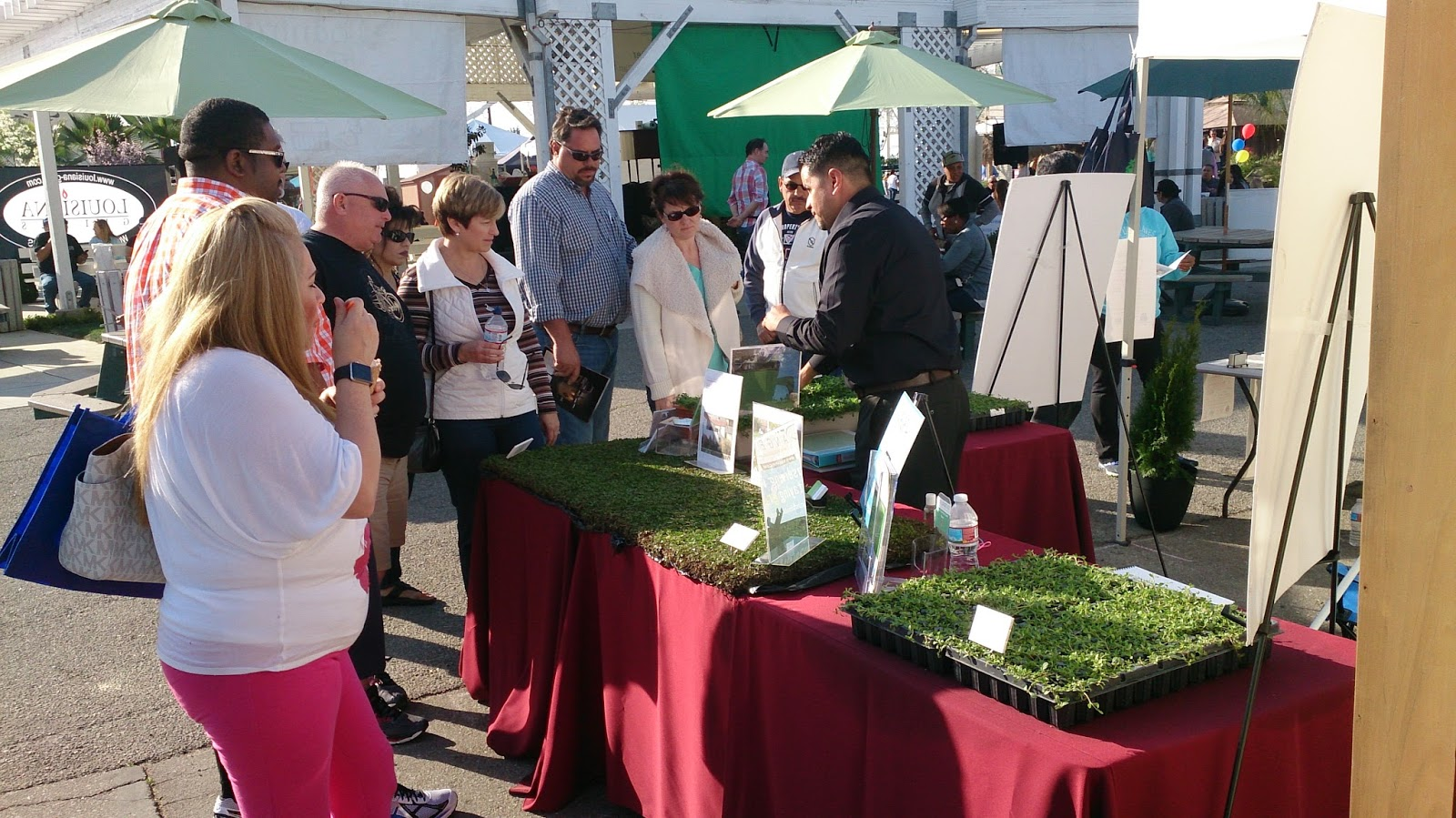 Kurapia Uc Tested Science Behind Water Efficient Groundcover