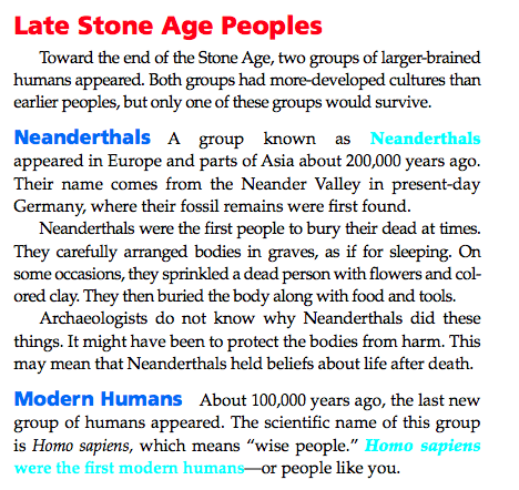 the evolution of neanderthals essay The evolution of homo sapiens is vitally important to defining our species in the broader  between 1 and 4 percent of homo sapiens breeding was with neanderthals.