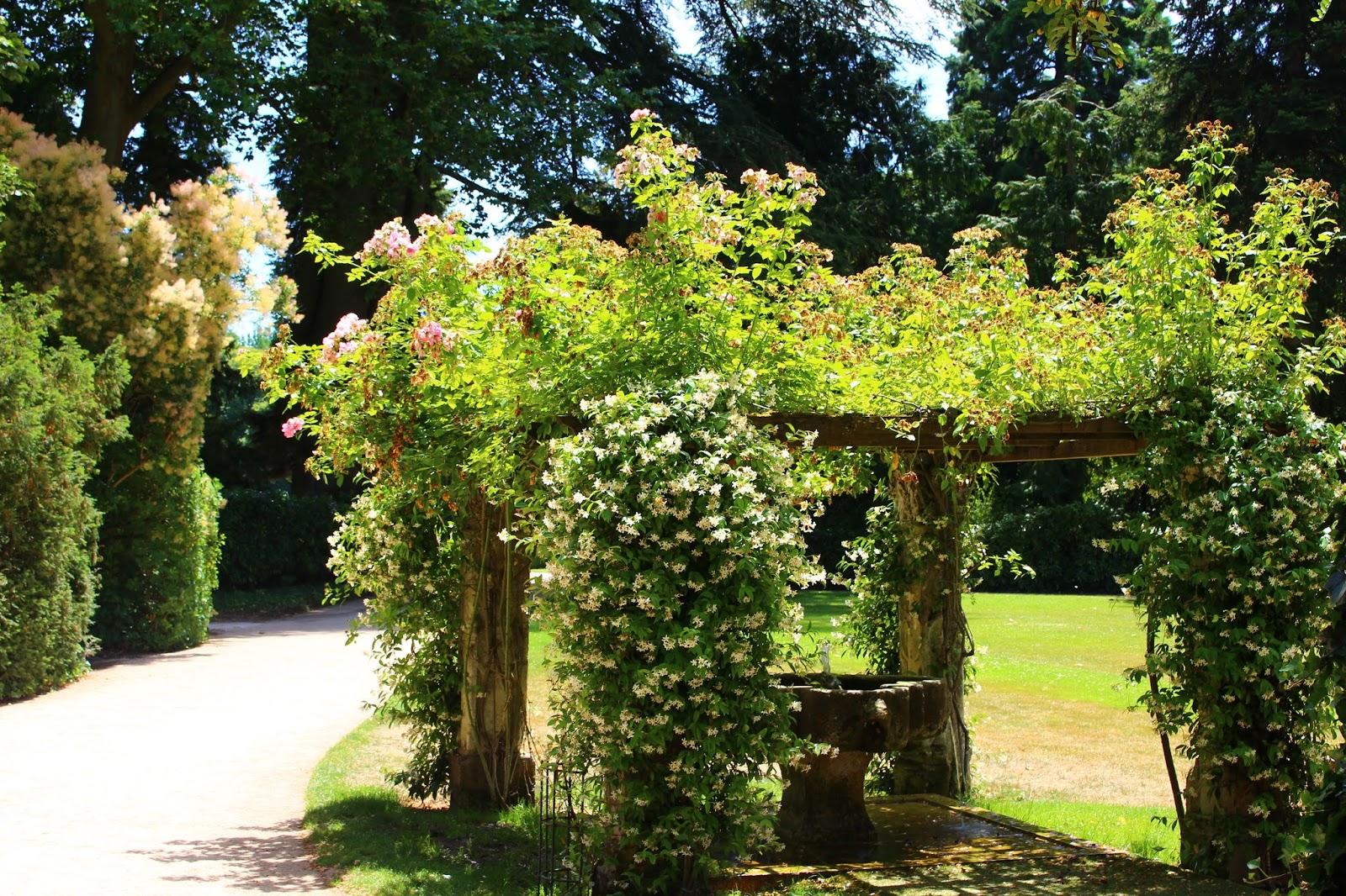 Roses du jardin ch neland sur les terres de catherine et for Jardin de catherine