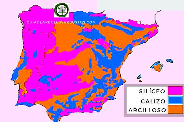 Mapa de que muestra las zonas de suelos silíceos o ácidos en España