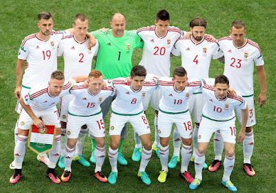Magyarország, EURO 2016, Franciaország, Gazeta Sporturilor, magyar labdarúgó-válogatott, Bernd Storck,