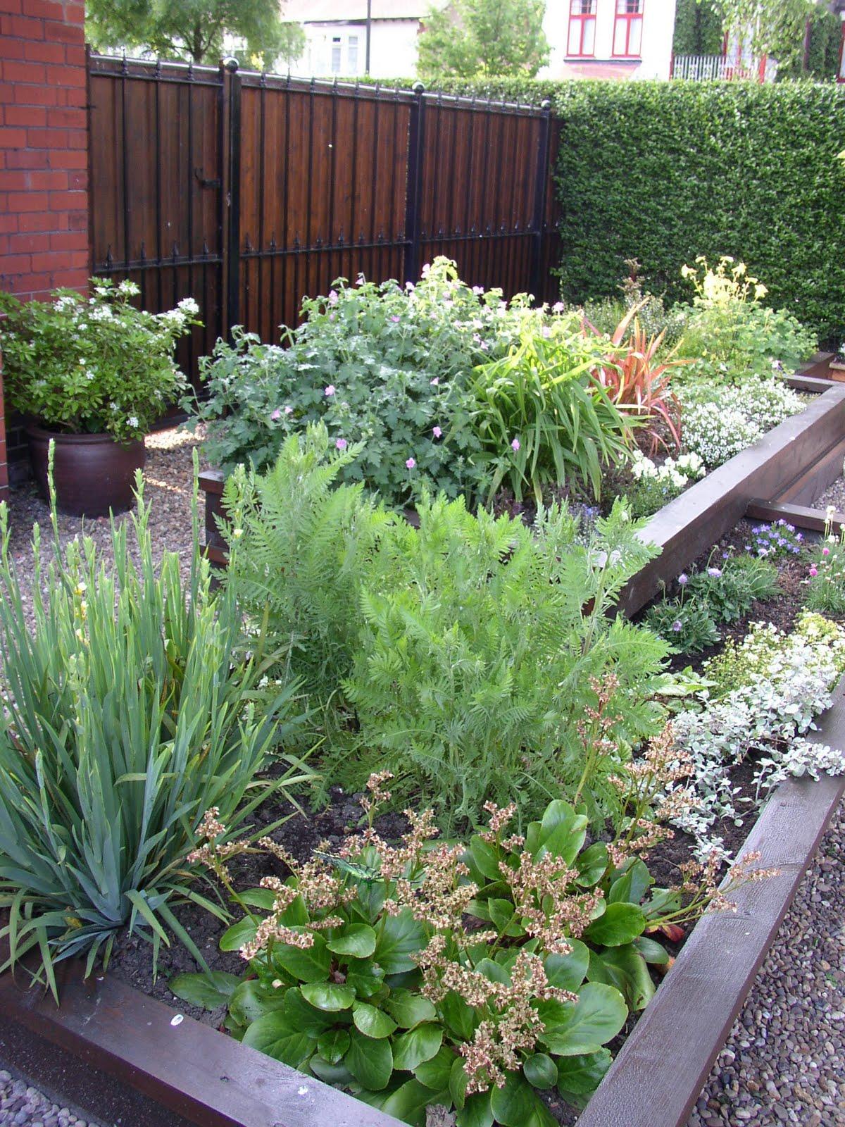 Fotos de jardines peque os fotografias for Fotos de jardines pequenos