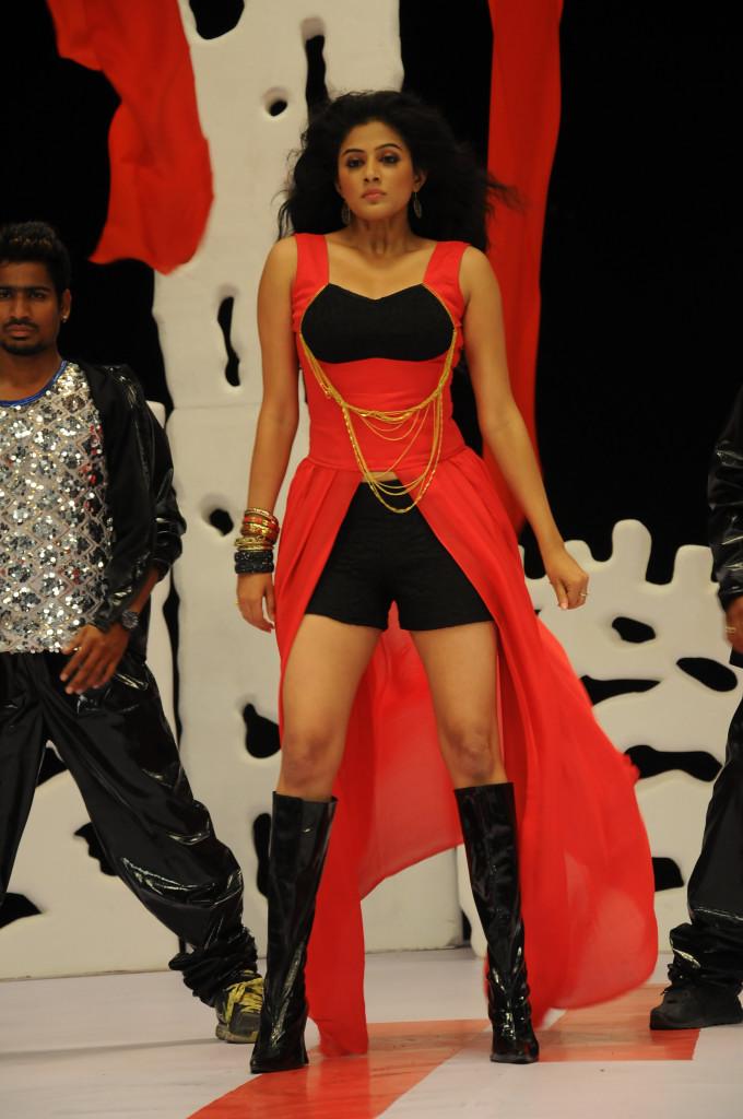 Exotic sexy Priyamani in chandi movie hot stills